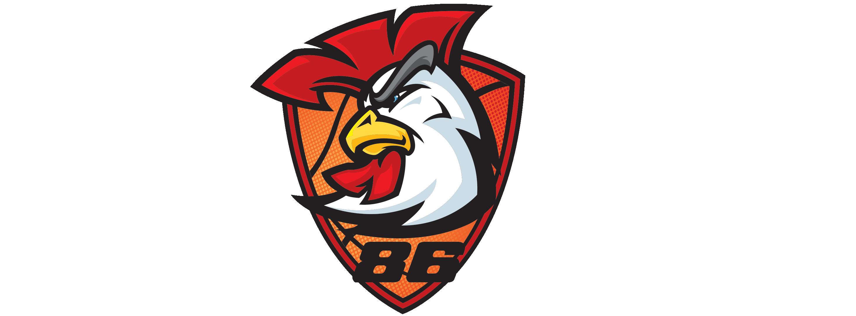 Hønefoss Basketballklubb - Offisiell hjemmeside